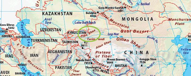 Valkosipuli on kotoisin Tienšanin alueelta Keski-Aasiasta.
